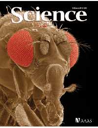 Science - Sestrin as a feedback inhibitor of TOR that prevents age-related pathologies.